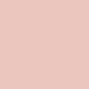 The_New_School_logo