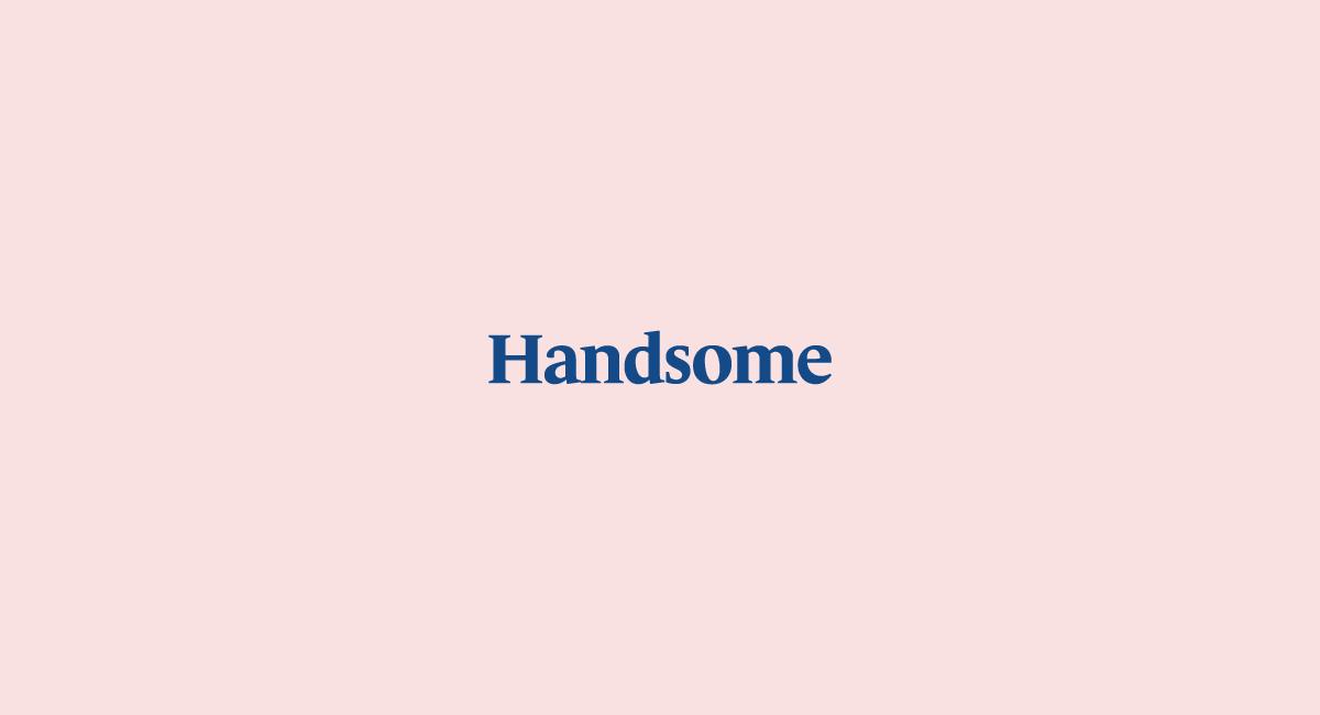 VedrosStudio_Handsome_Wordmark_Pink